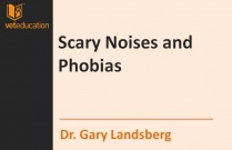Scary Noises and Phobias