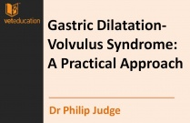 Gastric Dilatation-Volvulus Syndrome: A Practical Approach