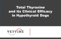 Total Thyroxine and its Clinical Efficacy in Hypothyroid Dogs
