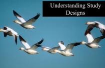 Understanding Study Designs