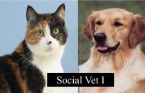 The Social Vet 1