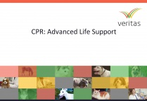 CPR: Advanced Life Support