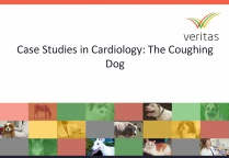 Case Studies in Cardiology: The Coughing Dog