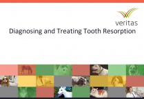 Diagnosing and Treating Tooth Resorption