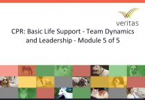 CPR: Basic Life Support - Team Dynamics and Leadership - Module 5 of 5