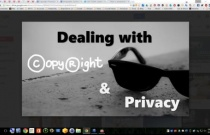 Copyright and Privacy Issues
