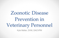 Zoonotic Disease Prevention in Veterinary Personnel