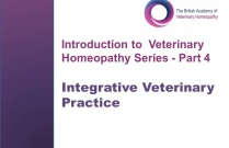 Integrative Veterinary Practice  (Introduction to Veterinary Homeopathy Series Part 4)