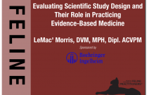 Evaluating Scientific Study Designs and Their Role in Practicing Evidence-Based Medicine