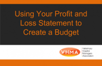 Using Your Profit and Loss Statement to Create a Budget