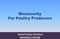 Biosecurity for Poutry Production - Implementation Manual