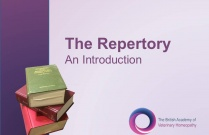The Repertory - An Introduction