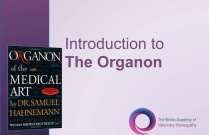 An Introduction to the Organon