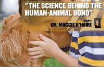 The Science Behind the Human-Animal Bond