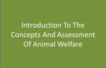 CPCA01010 Concepts of Animal Welfare