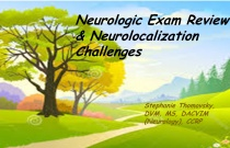 Neurologic Exam Review & Neurolocalization Challenges