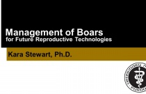Management of Boars for Future Reproductive Technologies