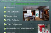 Antibiothérapie AVEF 2012 Reims