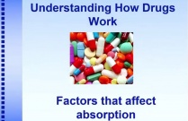 Understanding How Drugs Work: Factors that Affect Absorption