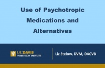 Use of Psychotropic Medications and Alternatives