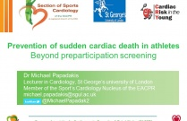 Prevention of Sudden Cardiac Death in Athletes