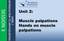 Muscle palpations - Session #3: Unit 2