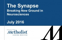 The Synapse - Breaking New Ground in Neurosciences - July 2016