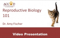 "ACC&D's 5th International Symposium: ""Reproductive Biology 101"" by Amy Fischer, PhD (presentation)"