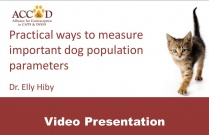 "ACC&D's 5th International Symposium: ""Practical Ways to measure important dog population parameters"" by Dr. Elly Hiby (presentation)"
