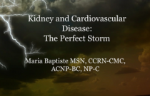 Chronic Kidney Disease and Cardiovascular Disease-Perfect Storm