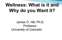 Wellness: What is it and Why do you Want it?