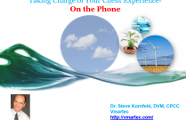 Taking charge of your client experience on the phone