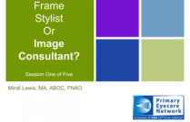Frame Stylist or Image Consultant? #1