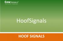 HoofSignals