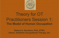 Theory Refresher for OT Practitioners: MOHO