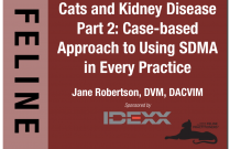Cats & Kidney Disease Part 2: Case-based Approach to Using SDMA in Everyday Practice