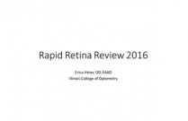 Rapid Review #2