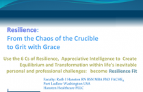 Personal & Professional Resilience: From the Chaos of the Crucible  to Grit with Grace
