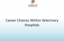 Career Choices Within Veterinary Hospitals
