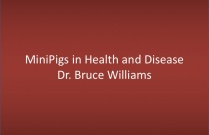 Minipigs in Health and Disease