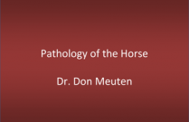 Pathology of the Horse