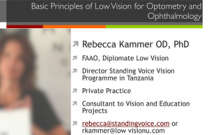 The Basic Principles of Low Vision