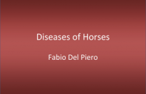 Diseases of the Horse