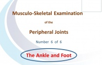 Examination of Ankle and Foot