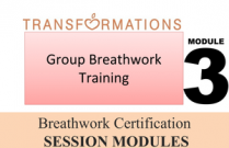 Breathwork Certification, Module 3: Group Breathwork Training