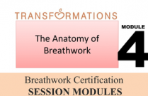 Breathwork Certification, Module 4: The Anatomy of Breathwork