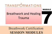 Breathwork Certification, Module 7: Breathwork and Healing Trauma