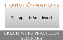 Breathwork Practicum Seminar 1: Therapeutic Breathwork - Course