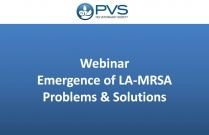 Webinar - Emergence of LA-MRSA Problems and Solutions