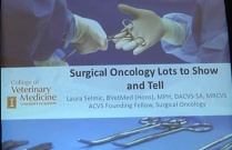 Surgical Oncology: Lots to Show and Tell